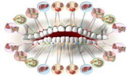 Symboliques des dents
