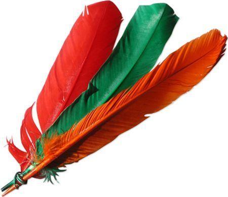 Signification des plumes message de nos guides anges energie denis sanchez - Signification des plumes d oiseaux ...